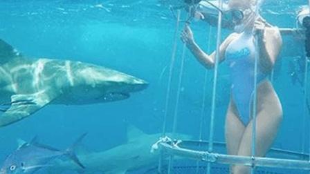 女子水下直播被鲨鱼咬哭 脚部受伤缝了20多针