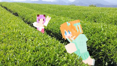 【大橙子】妹子庄园4周目P25龙井茶园[我的世界Minecraft]