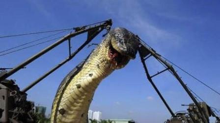 三峡灵异事件: 建大坝切断龙脉, 惊动封印的蛇是真的吗?