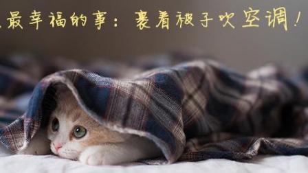 每日一囧 2017:我要开最冷的空调 盖最厚的被子 做最懒的猫 159