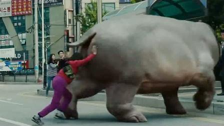 少女养了一只河马一样大的猪, 把纽约搅的天翻地覆