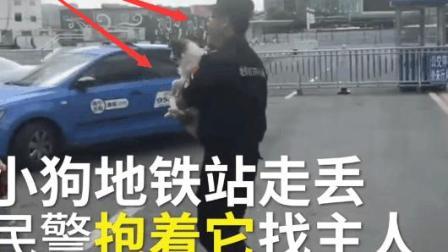 刚刚实拍: 小狗走丢, 地铁暖心的民警抱着它寻找主人