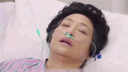 广式妹纸763期《我的前半生》薛甄珠去世前让贺函娶子君