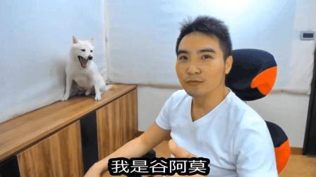 【谷阿莫】人狗廢片1: 六個應該實用的養狗技巧