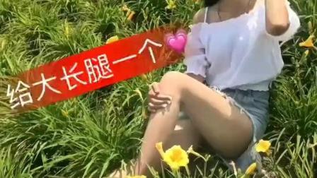美女花丛的自拍, 迷人长腿