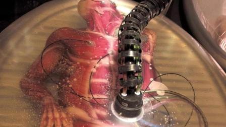 一部百里挑一的科幻電影, 土豪研究克隆人做胚胎, 哪里不好換哪里