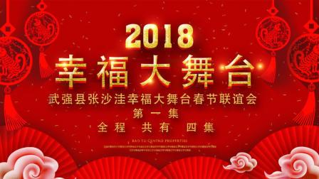 武强县张沙洼幸福大舞台春节联谊会 第一集