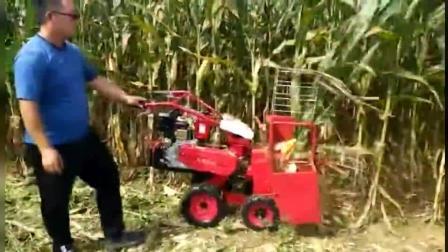 一只手扶着走的玉米收割机, 还能秸秆还田