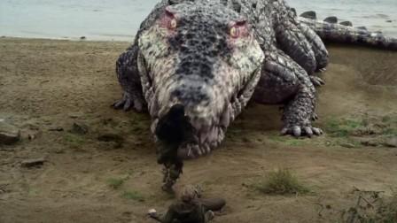 梦幻岛:这条鳄鱼真的好大,隔着屏幕都感受到了它的呼吸!