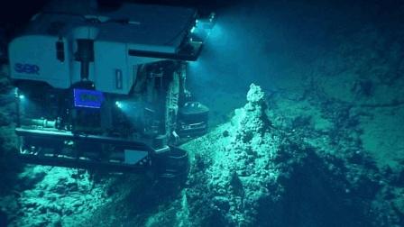 马里亚纳海沟7500米深处 科学家发现了它们 实在太过于神奇了