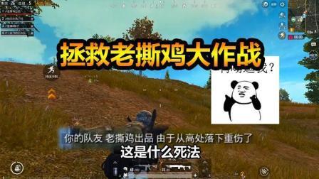 刺激战场: 老撕鸡意外摔落悬崖 柚子火线营救能否成功