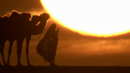 抖音很火的《沙漠骆驼》饭制MV, 看着画面听着音
