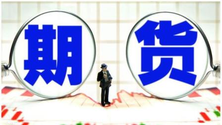 2019年01月31日【期货顾比团队】主播期货许彬国内
