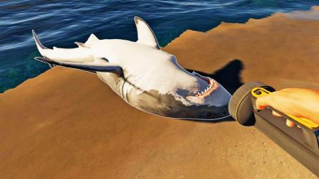 荒岛求生112:我发现一只搁浅的鲨鱼,它的死亡原因不简单