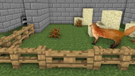 我的世界动画-怪物学院-动物园-MAXIM