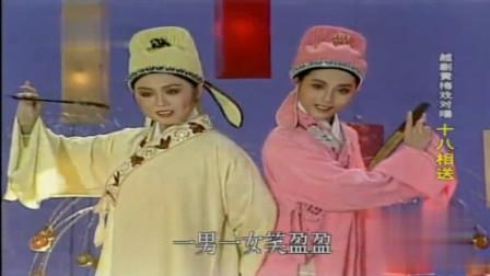 黄梅戏越剧梁祝对唱 十八相送(吴琼 何英)