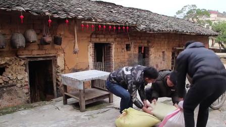 农村搞笑视频,小伙上演搞笑搬米,妈妈在旁边