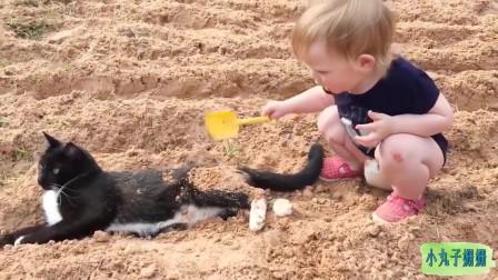 搞笑动物合集:把猫咪当坐垫的宝宝,好有爱!