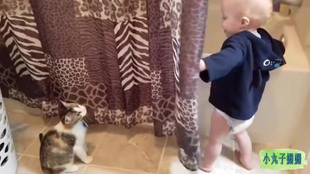 搞笑动物合集:和萌娃捉迷藏的猫咪,真有爱!