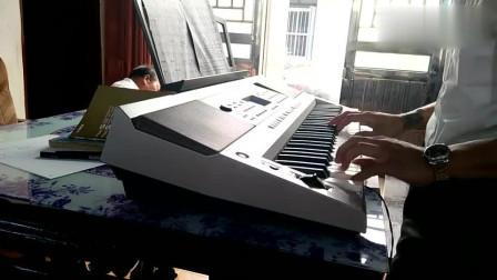 电子琴演奏《红楼梦》插曲《葬花吟》,流行不