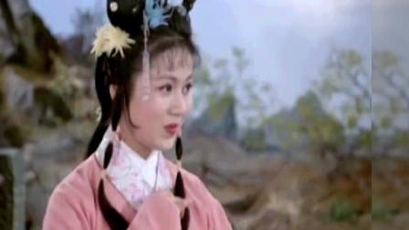 黄梅戏仙凡联姻又见龙女情(马兰 黄新德)