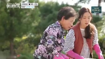 韩国女明星做泡菜, 20斤辣椒面一下全放进去, 一