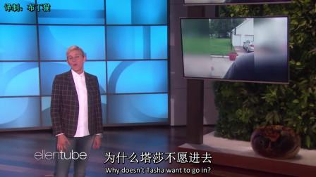 [中英]艾伦分享搞笑视频,拯救你的不开心