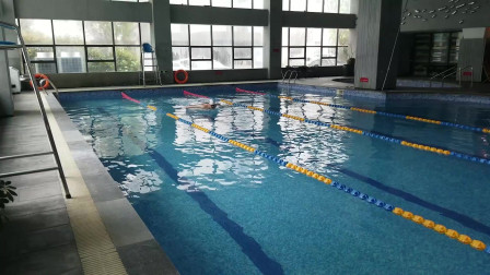 中游体育:退役七年蛙泳专项的邵教练游蝶泳