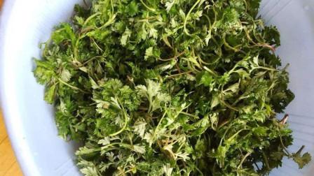 肝不太好,试试这种蔬菜,坚持吃,护肝排毒,预防肝病!