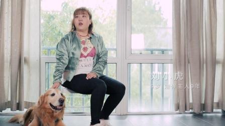 """素人表白狗狗的暖心视频 """"如果有下辈子,让我守护你"""""""