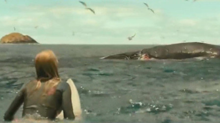 美女看到海上一条死鲸鱼,没想到危险就在她身