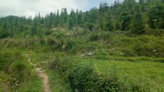 乡村的美景,是大自然是一道美丽风景线
