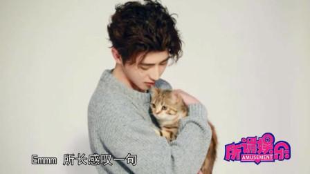 酸了蔡徐坤直播在线撩猫我最喜欢的宠物就在我