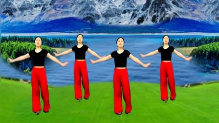 广场舞《草原上的月光》 优美时尚好看 音乐非常