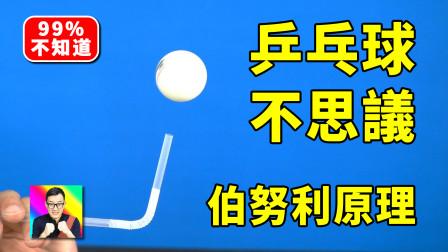 乒乓球的6个趣味实验!伯努利原理! 科学小实验