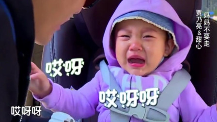 甜馨贾乃亮第一次出现在综艺中