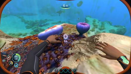 深海迷航生存实况