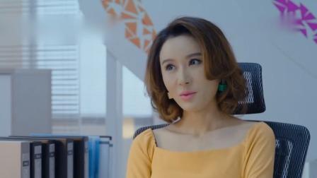温丽丽设局坑波派,劝张红星给朱桂香道歉