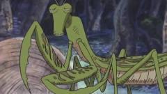 海贼王:路飞和乔巴被螳螂怪疯狂追击,好厉害