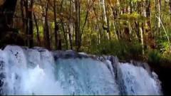 大自然风光--小溪流水