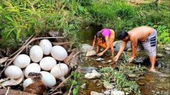 农村夫妻户外打野,发现一窝鸭蛋,这下又有美