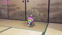 《假面骑士Zi-O》自制变身特效搞笑动画!狗狗变