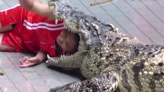 男子用仿真鳄鱼恶搞游客,结果却弄巧成拙,下