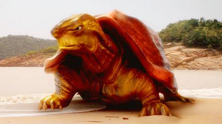 通天河老乌龟为何修行1300年仍不得人身?