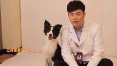 《动物管理局》拍摄花絮:陈赫搞笑,四爷也太
