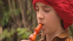 国外恶搞:小男孩吹乐器,蛇突然跑出来?旁边