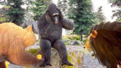 搞笑动物故事:熊和狮子帮助大猩猩修车 助人为