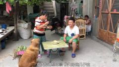 媳妇用玉米做啥美食,狗狗和儿子都坐等喂食,