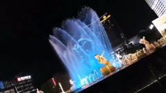 杭州武林广场音乐喷泉