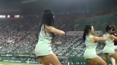 韩国棒球啦啦队,超短裙热舞,美女酷似刘亦菲